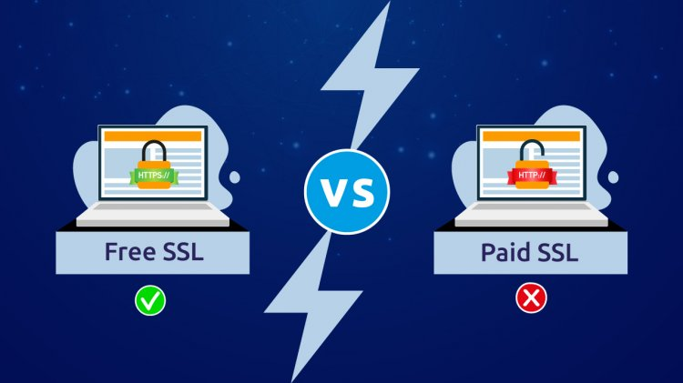 Free SSL Vs Paid SSL Certificate: Which is Best for You?